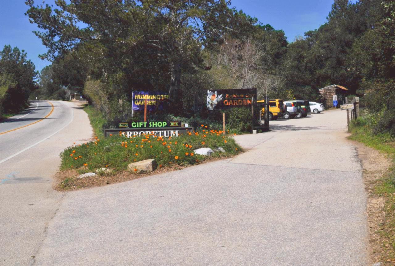 Bcx.News UCSC Arboretum Santa Cruz