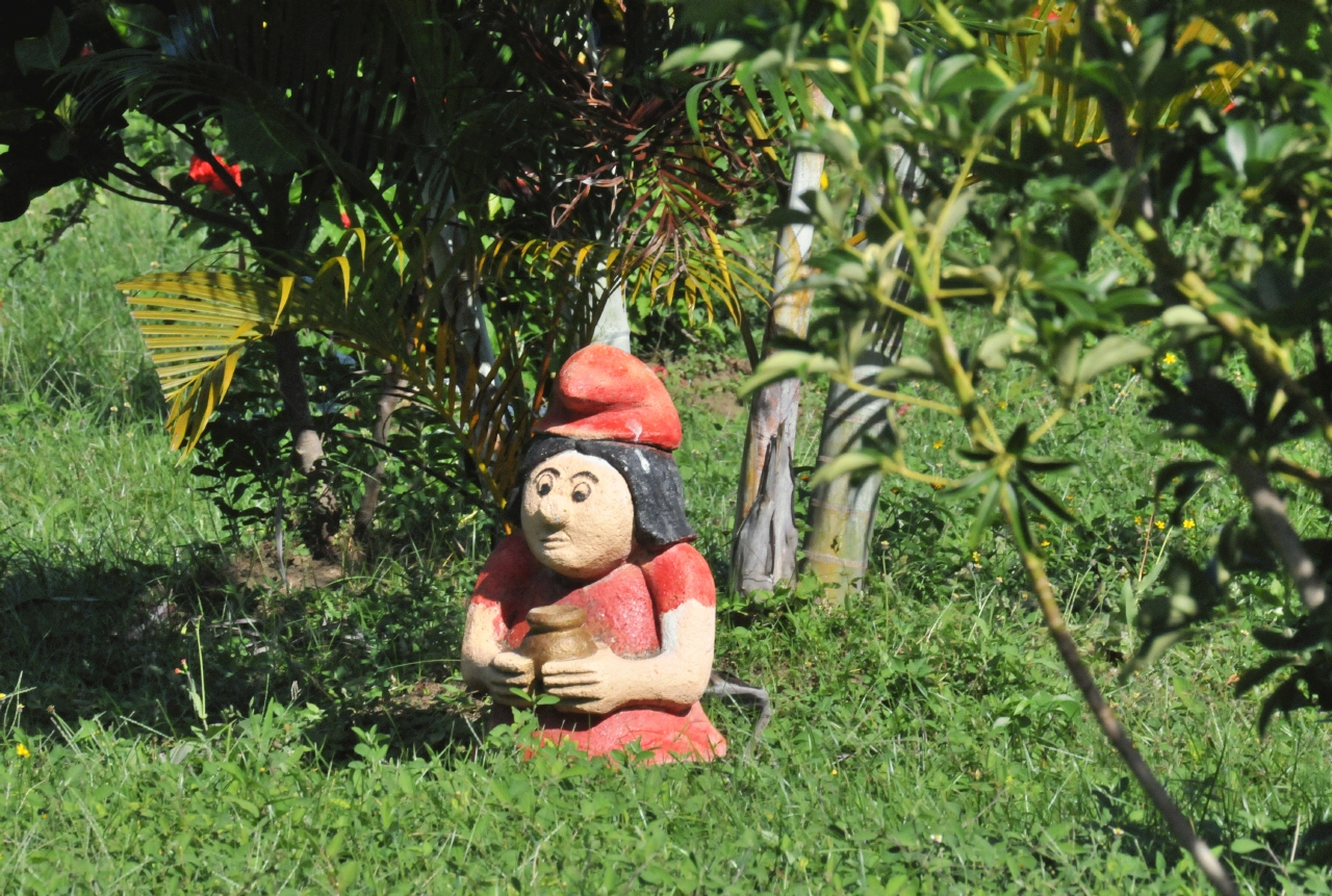 BcxNews Garden Gnomes Outside Ojo Del Agua