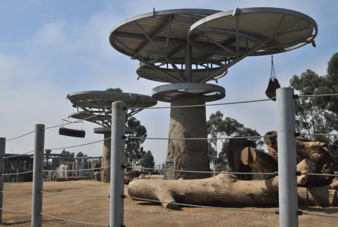 PHOTO ESSAY  The San Diego Zoo
