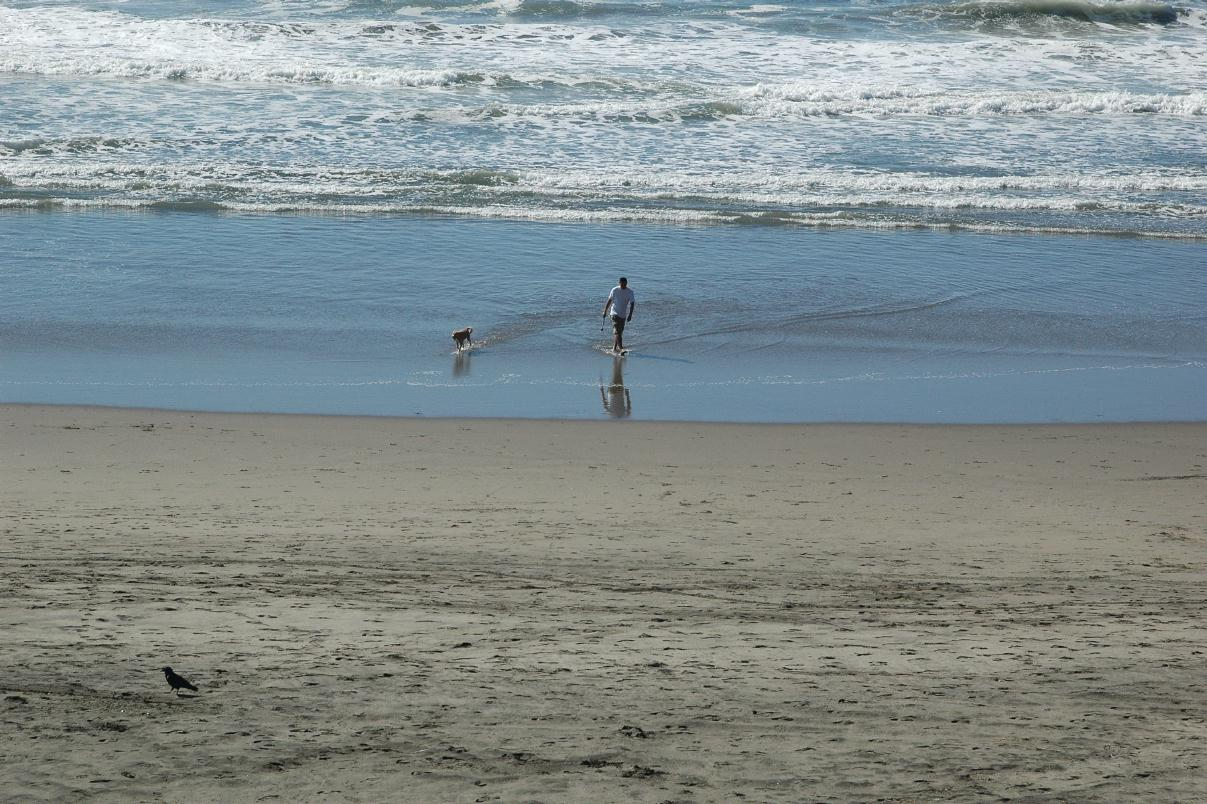 Ocean Beach San Francisco Ca Surf Report
