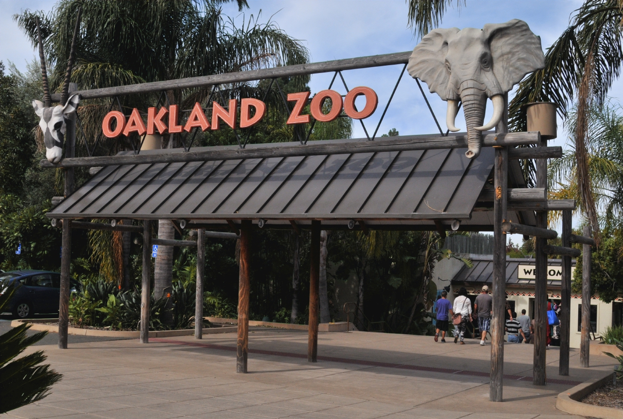 oakland zoos newest addition - HD 1280×861